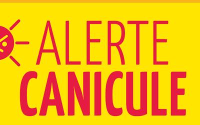 Canicule-Report du DNB