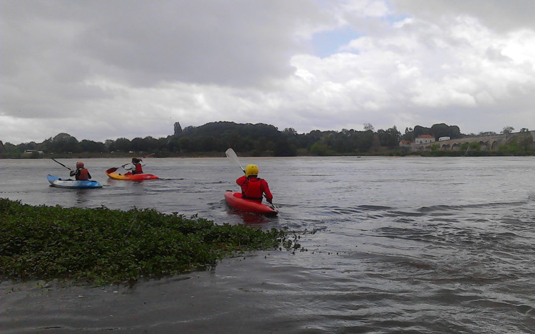 Sortie & excursion en Kayak !